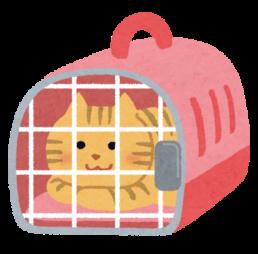 吹田 猫 動物病院